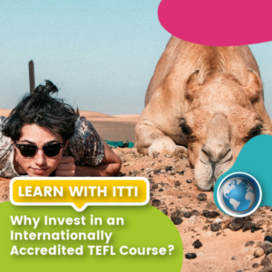 Read more about the article Why Invest in an Internationally Accredited TEFL Course?